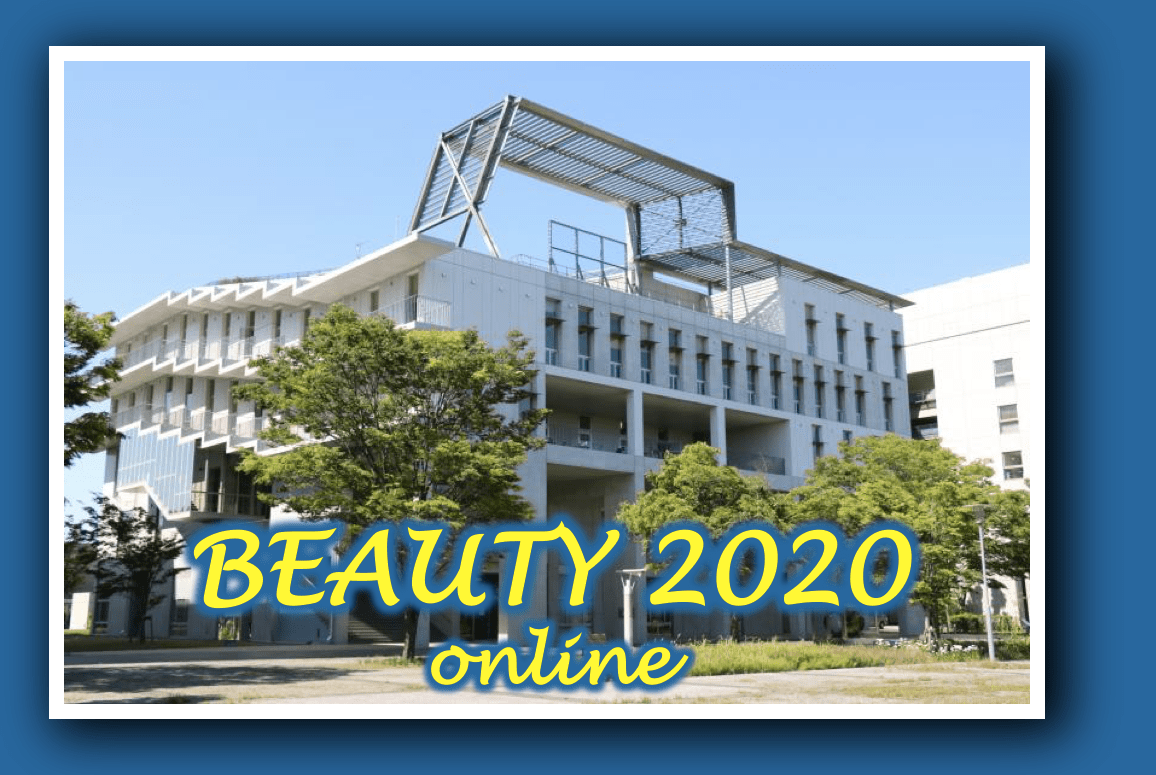 19th International Conference on B-Physics at Frontier Machines, Beauty 2020